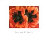 Oriental Poppies (Med) Kunstdrucke von Georgia O'Keeffe