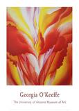 Red Canna Art by Georgia O'Keeffe
