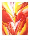 Red Canna Poster af Georgia O'Keeffe