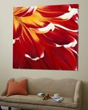 Colourful Floral I Plakater av Yvonne Poelstra-Holzaus