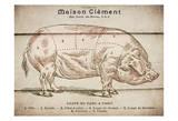 Coupe Du Porc Pôsters por Tina Carlson