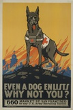 Even a Dog Enlists, Why Not You Giclee-trykk