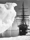 Terra Nova in Antarctica Fotografisk tryk