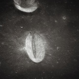 Oval Crater on the Moon Impressão fotográfica