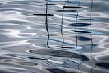 Four Premium-Fotodruck von Ursula Abresch