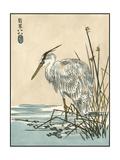 Oriental Crane I Prints by  Vision Studio