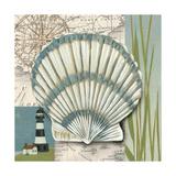 Seaside Shell II Art by Chariklia Zarris