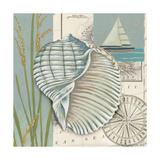 Seaside Shell I Posters by Chariklia Zarris