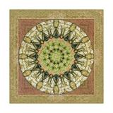 Floress Mandala II Posters by Catherine Kohnke