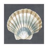 Shell on Slate III Pôsteres por Megan Meagher