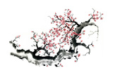 Plum Blossom Branch III Prints by Nan Rae