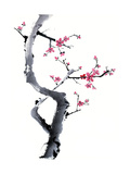 Plum Blossom Branch I Art by Nan Rae