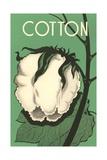 Cotton Boll Impressão giclée
