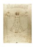 Vitruvian Man (Canon of Proportions) Reproduction procédé giclée par  Leonardo da Vinci