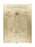 Vitruvian Man (Canon of Proportions) Giclee-trykk av  Leonardo da Vinci