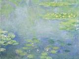 Waterlilies Impressão giclée por Claude Monet