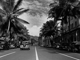 Street in Honolulu, Hawaii Reproduction photographique