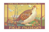 Poster for Field Museum with Quail Reproduction procédé giclée