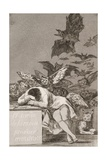 The Sleep of Reason Produces Monsters (No. 43), from Los Caprichos Reproduction procédé giclée par Suzanne Valadon