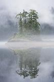 Rainforest Islands in Fog in Alaska Fotografisk trykk av Paul Souders