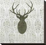 Modern Lodge II Stretched Canvas Print by Mali Nave