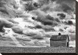 On the Hill Stretched Canvas Print by Trent Foltz