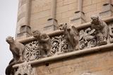 France, Dijon, Cathedral of St Benigne Photographic Print