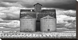 Two Corn Cribs Stretched Canvas Print by Trent Foltz