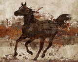 Running Free II Art by Conrad Knutsen