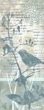 Winter Birds II Poster von Carol Robinson