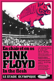 Pink Floyd Concert Print