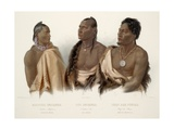 Missouri Indian, Oto Indian, Chief of the Puncas Stampa giclée di Karl Bodmer