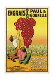 Engrais Paul Et Gounelle Poster Giclee Print by  Viano