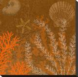 Coral Garden II Stretched Canvas Print by Max Carter