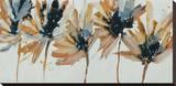 Sepia Flurry I Stretched Canvas Print by Lilian Scott