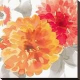 Peach Flower II Bedruckte aufgespannte Leinwand von Sandra Jacobs
