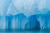 Glacial Ice Calved from the Leconte Glacier Photographic Print by Michael Nolan