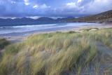 Beach at Luskentyre with Dune Grasses Blowing Fotoprint av Lee Frost