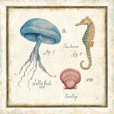 Oceanography III Kunstdrucke von Daphne Brissonnet