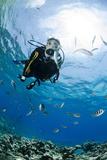 One Scuba Diver Diving in Shallow Water Fotografie-Druck von Mark Doherty
