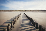 Wooden Groynes on a Sandy Beach, Leading to Sand Dunes, Domburg, Zeeland, the Netherlands, Europe Photographic Print by Mark Doherty