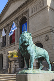 One of Two Bronze Lion Statues Outside the Art Institute of Chicago Stampa fotografica di Amanda Hall