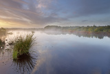 Ballynahone Bog at Dawn, County Antrim, Northern Ireland, UK, June 2011 Photographic Print by Ben Hall