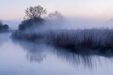 River Stour with Early Morning Mist and Frost, Near Wimborne Minster, Dorset, UK. April 2012 Photographic Print by Ross Hoddinott