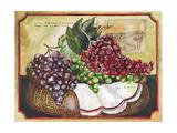 Basket of Grapes Reproduction procédé giclée par Jennifer Garant