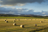 Barley Straw Bales in Field after Harvest, Inverness-Shire, Scotland, UK, October Photographic Print by Mark Hamblin
