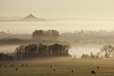 View Towards Glastonbury Tor from Walton Hill at Dawn, Somerset Levels, Somerset, England, UK Stampa fotografica di Guy Edwardes