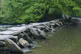 Tarr Steps, Medieval Clapper Bridge Crossing the River Barle, Exmoor National Park, Somerset, UK 写真プリント : ロス・ホディノット