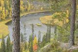 Kitkajoki River, Oulanka National Park, Finland, September 2008 Photographic Print by  Widstrand