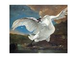 The Threatened Swan Reproduction procédé giclée par Jan Asselijn